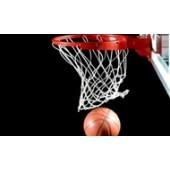 Баскетбол (10)